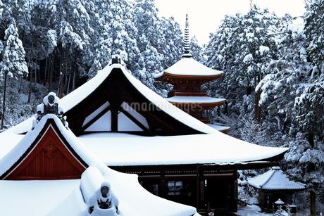 1月 雪景色の長命寺-近江の古刹-の写真素材 [FYI02672086]