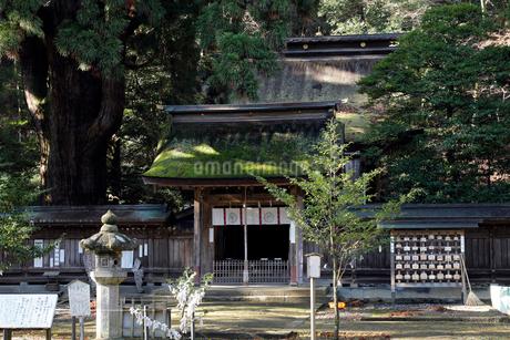 12月 若狭姫神社-若狭の一の宮-の写真素材 [FYI02672093]