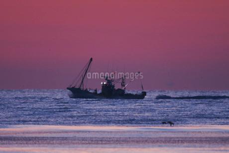 朝のホタテ船の写真素材 [FYI02672120]