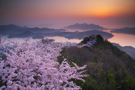 積善山の桜と日の出の写真素材 [FYI02672123]