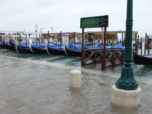 海面上昇により海水がおしよせる岸辺の写真素材 [FYI02672182]