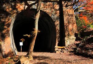 12月 紅葉の愛岐トンネル群 近代化産業遺産の写真素材 [FYI02672261]