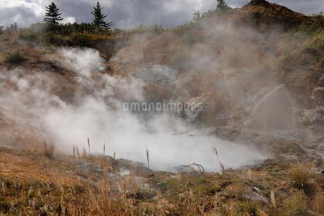 10月 後生掛温泉の自然研究路の写真素材 [FYI02672265]