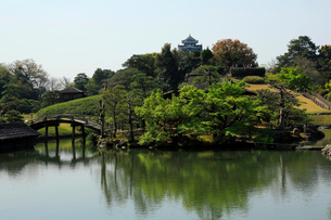 4月 春の岡山後楽園の写真素材 [FYI02672273]