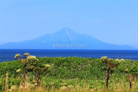 7月 対岸から見る夏の利尻島の写真素材 [FYI02672293]