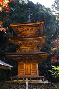 11月 紅葉の横蔵寺-美濃の正倉院-の写真素材 [FYI02672298]
