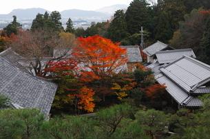 11月秋 紅葉の百済寺 滋賀の秋景色の写真素材 [FYI02672302]