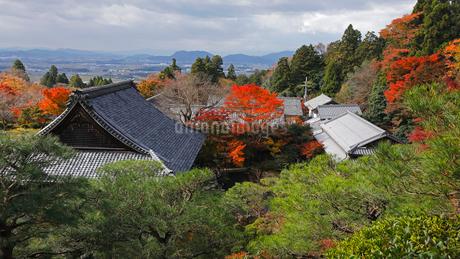 11月秋 紅葉の百済寺 滋賀の秋景色の写真素材 [FYI02672320]