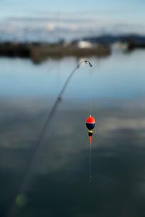 魚釣りのイメージ写真の写真素材 [FYI02672506]