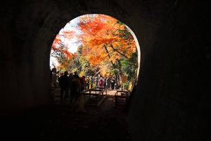 12月 紅葉の愛岐トンネル群 近代化産業遺産の写真素材 [FYI02672512]