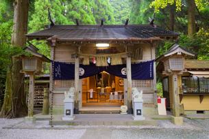 秋の荒立神社の写真素材 [FYI02672514]