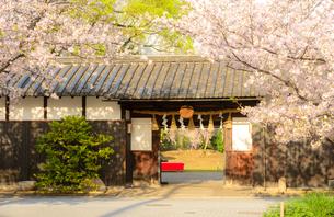 灘の酒蔵 神戸酒心館の写真素材 [FYI02672544]