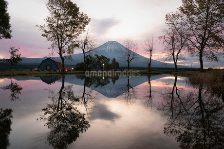 朝霧高原より望む朝焼けの空と富士山の写真素材 [FYI02672580]