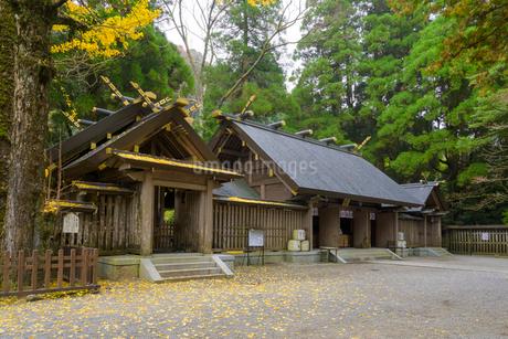 秋の天岩戸神社 西本宮の写真素材 [FYI02672595]