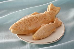 鮭モナカの写真素材 [FYI02672612]