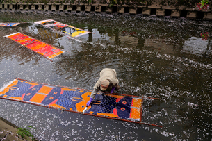 4月桜 岩倉の五条川「のんぼり洗い」の写真素材 [FYI02672613]