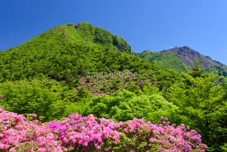 初夏の仁田峠の写真素材 [FYI02672615]