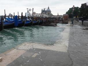 海面上昇により海水がおしよせる岸辺の写真素材 [FYI02672704]