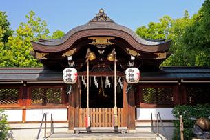 5月 春の晴明神社の写真素材 [FYI02672814]