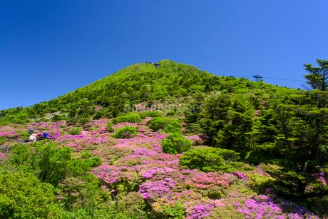 初夏の仁田峠の写真素材 [FYI02672822]