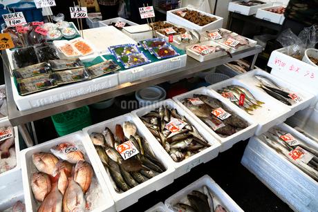 11月 魚市場-冬の北陸-の写真素材 [FYI02672925]