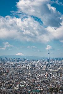 アイ・リンクタウン展望施設より望む富士山と東京スカイツリーと東京のスカイラインの写真素材 [FYI02672979]