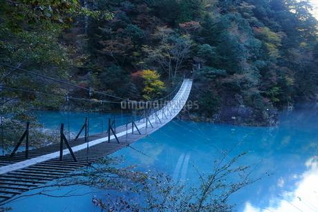 11月 夢の吊橋 紅葉の寸又峡の写真素材 [FYI02672982]