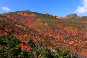 10月 紅葉の安達太良山の写真素材 [FYI02672994]