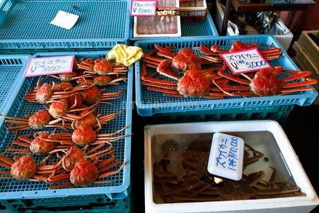 11月 魚市場-冬の北陸-の写真素材 [FYI02673014]