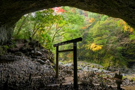 秋の天安河原の写真素材 [FYI02673082]