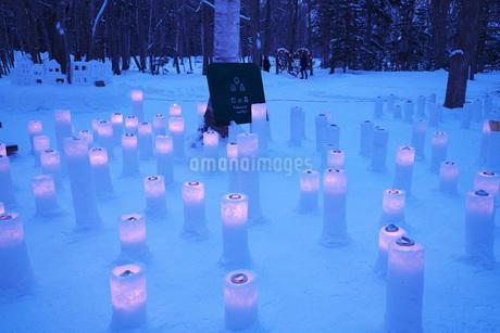 ダイヤモンドダストinKAWAYU 灯の森の写真素材 [FYI02673199]