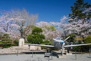 春の特攻平和公園の写真素材 [FYI02673270]