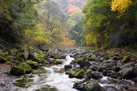秋の天安河原 岩戸川の写真素材 [FYI02673293]