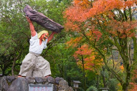 秋の天岩戸神社 天手力男命の写真素材 [FYI02673322]