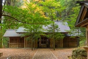 秋の天岩戸神社 東本宮の写真素材 [FYI02673356]