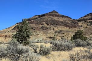 ジョン・デイ化石層国定公園のシープ・ロック・ユニットの写真素材 [FYI02673399]