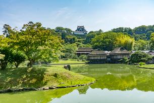 彦根城と玄宮園の写真素材 [FYI02673434]