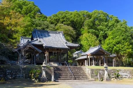 秋の竹田神社の写真素材 [FYI02673524]