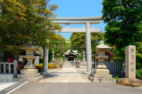芦屋神社の写真素材 [FYI02673580]