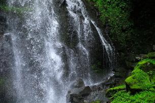 7月 八岳(やたけ)の滝 夏の八ヶ岳の写真素材 [FYI02673583]