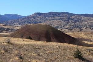 ジョン・デイ化石層国定公園のペインテッド・ヒルズ・ユニットの写真素材 [FYI02673698]