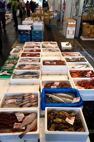 11月 魚市場-冬の北陸-の写真素材 [FYI02673733]