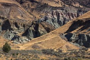 ジョン・デイ化石層国定公園のシープ・ロック・ユニットの写真素材 [FYI02673735]