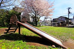 南長崎二丁目児童遊園 桜の写真素材 [FYI02674305]