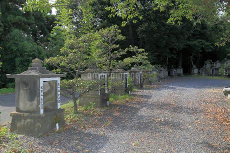 梅巌寺の石祠の写真素材 [FYI02674400]