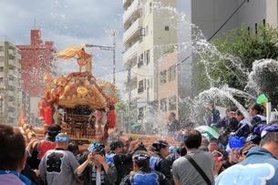 深川八幡祭りの写真素材 [FYI02674512]
