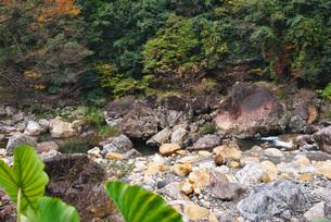 見立渓谷の秋の写真素材 [FYI02674527]