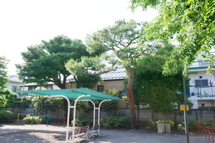 南荻窪公園の写真素材 [FYI02674626]
