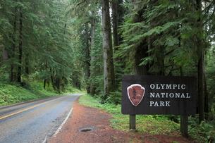 オリンピック国立公園の道路と公園標識の写真素材 [FYI02674783]