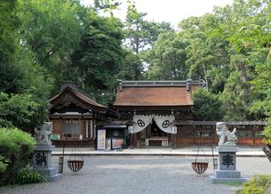 治水神社の写真素材 [FYI02674857]